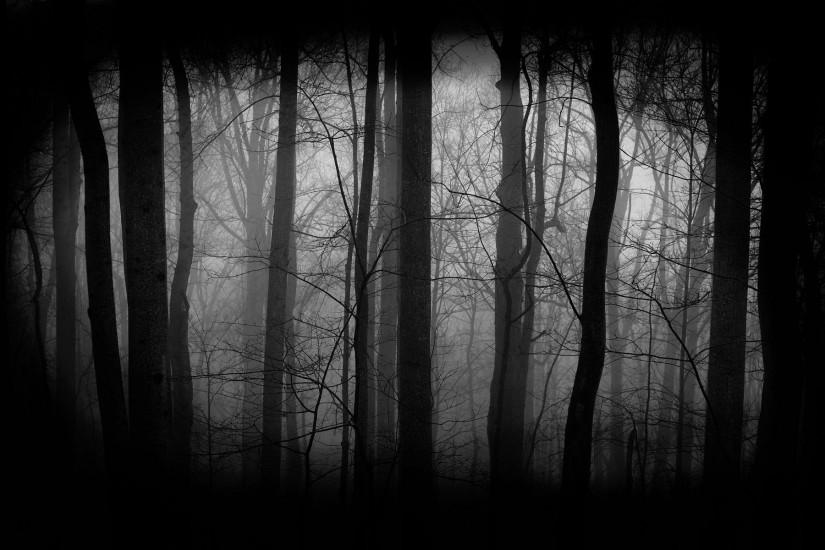 best dark forest background 1920x1200 lockscreen