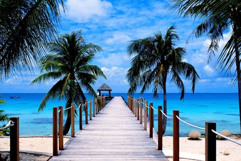 TROPICAL BEACH PIER NATURE Ocean Palm Trees Wallpaper Detail