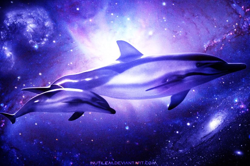 Dolphin wallpapers for desktop wallpapertag - Pink dolphin logo wallpaper ...