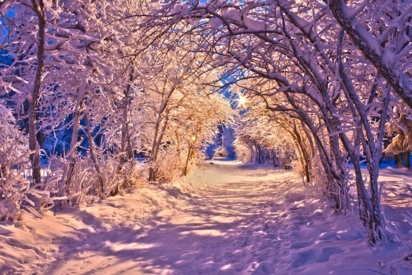 winter snow christmas sidewalk roads lights white trees wallpaper .