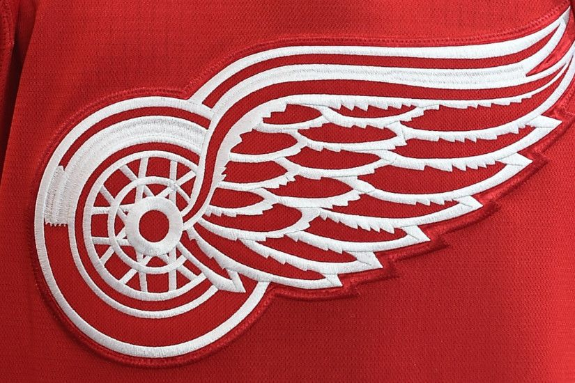 Detroit Red Wings 'vehemently disagree' with use of their logo at  Charlottesville rally | NHL | Sporting News