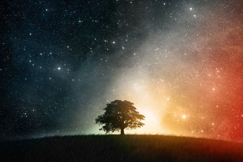 Earth A Dreamy World CGI Landscape Field Grass Sky Light Stars Colors Tree  Cosmos Space Wallpaper