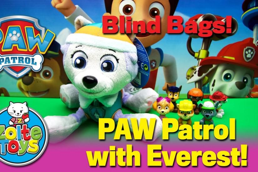 Best PAW Patrol Mini Blind Bags opening. Chase Marshall Skye Zuma Rocky  Rubble Everest