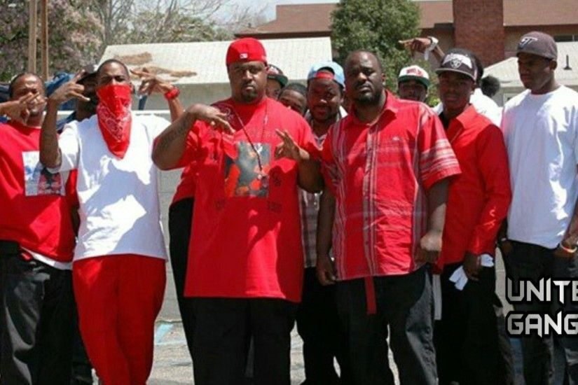 Delman Heights Bloods