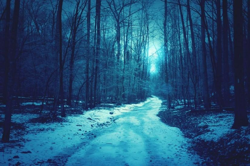 download dark forest background 1920x1080 for android