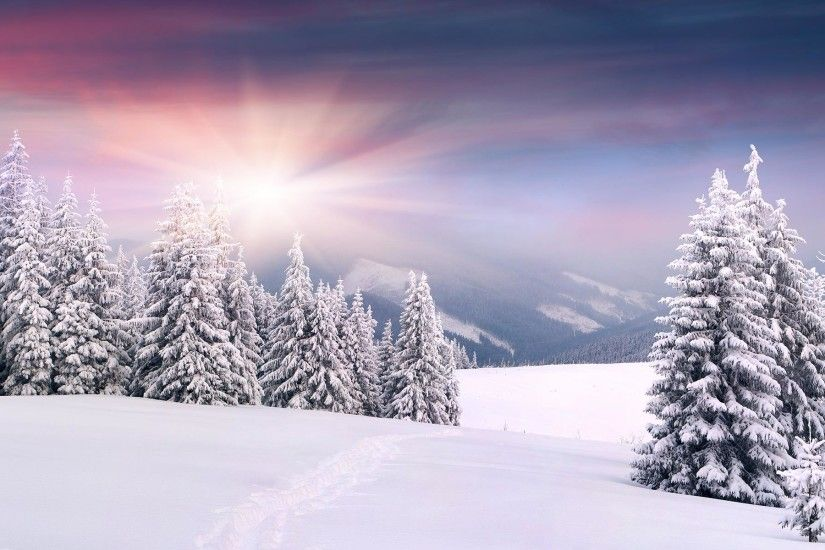 ... Snow HD Wallpapers 5 ...