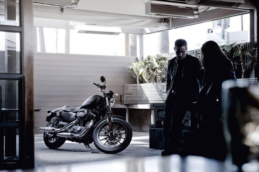 Check Harley Davidson Iron 883 Black