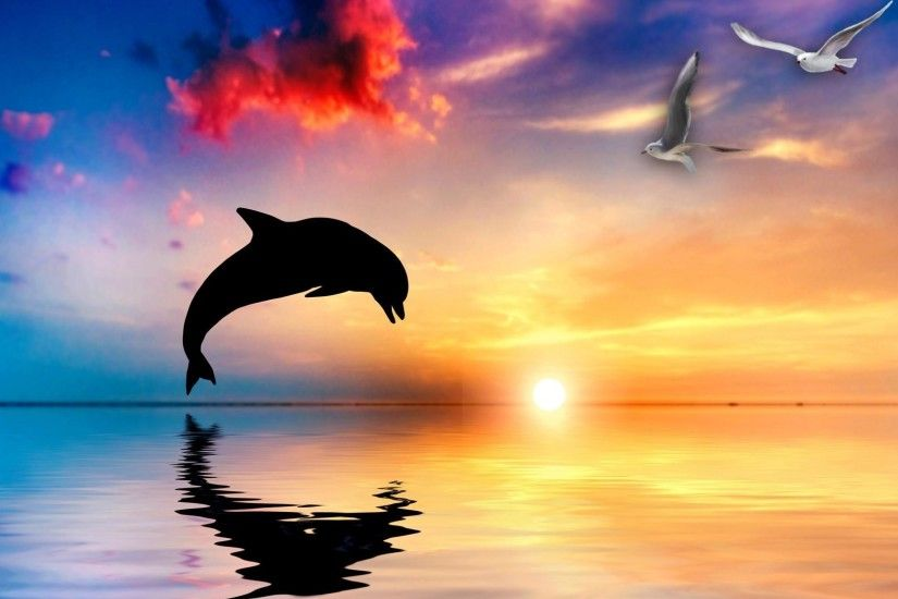 Abstract Dolphin Wallpapers