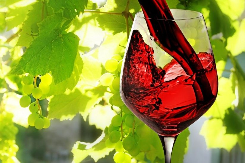 Wine red filled glass leaves vines grapes fruit wallpaper | 1920x1200 |  46820 | WallpaperUP