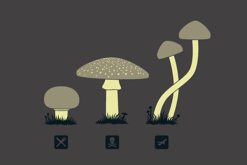 shrooms Wallpapers » FullHDWpp - Full HD Wallpapers 1920x1080