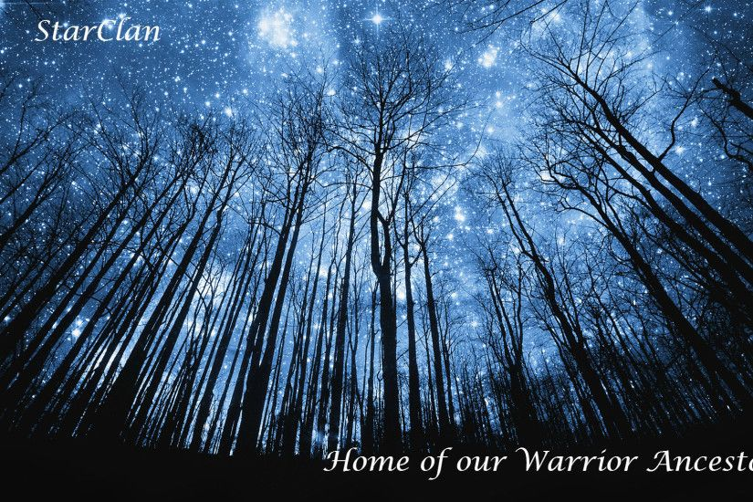 Warriors Cats Wallpaper Starclan