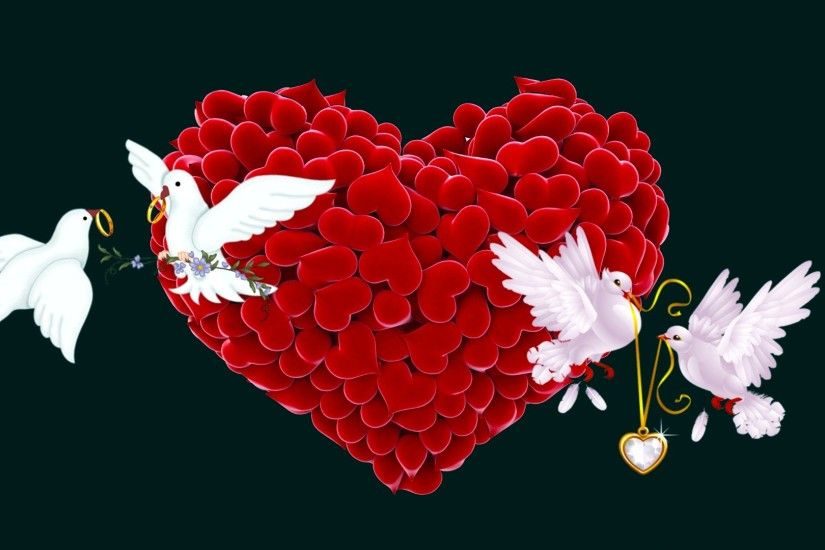 Red love birds wallpapers - photo#6