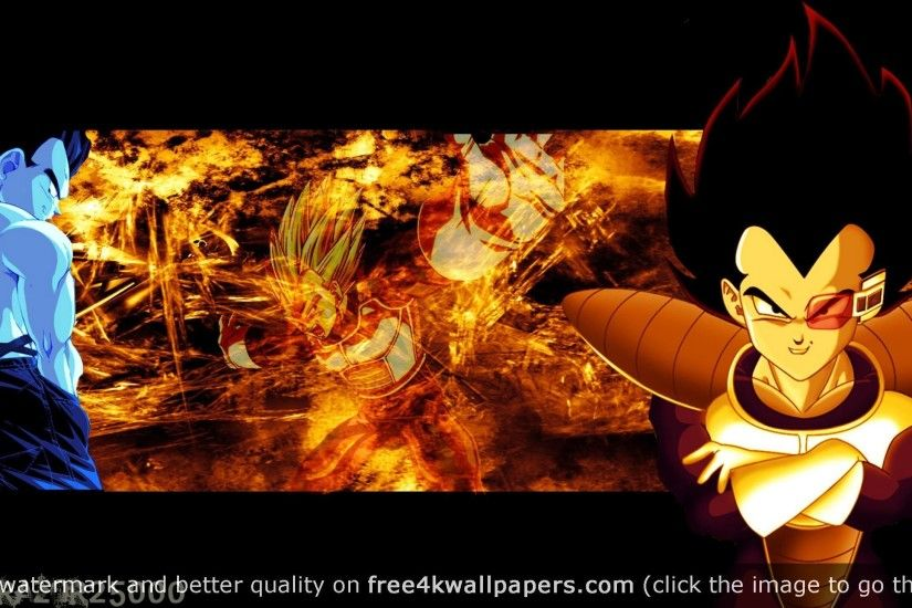 Dragon Ball Z Hd Vegeta wallpaper