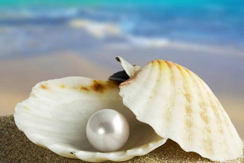Seashell and pearl Wallpapers, Seashell and pearl Backgrounds .