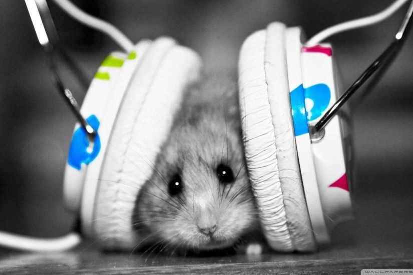 Wallpaper: Dj Mouse Wallpaper 1080p HD. Upload at January 29, 2014 by .