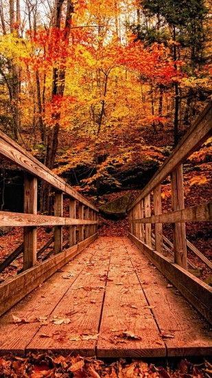 fall autumn wallpaper