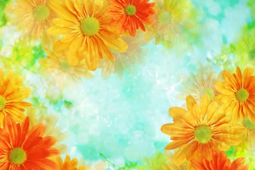 flowers background 2880x1800 ipad