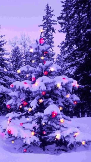 pink light 2014 Christmas tree iPhone 6 plus wallpaper - nature #2014 # Christmas #