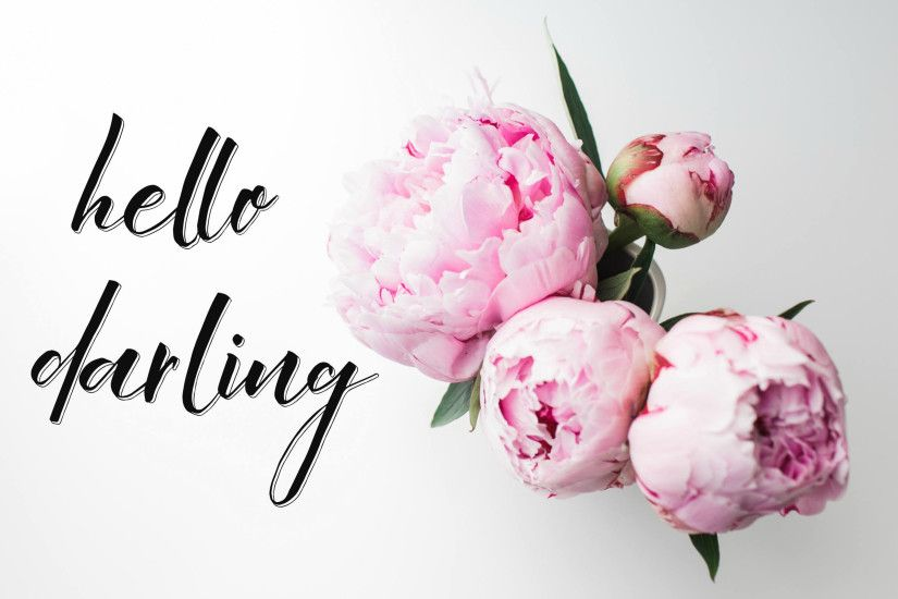 hello darling desktop wallpaper, pink peonies, floral, photograph laptop, computer  background,