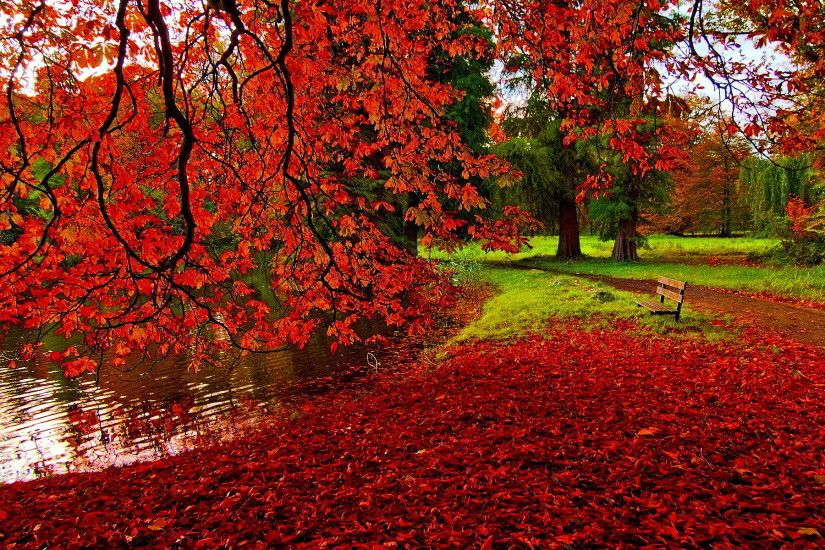 Backgrounds of Autumn Nature HD -  http://whatstrendingonline.com/backgrounds-