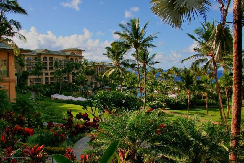 Preview wallpaper hawaii, hotel, palm trees, swimming pool, sea, flowers  3840x2160