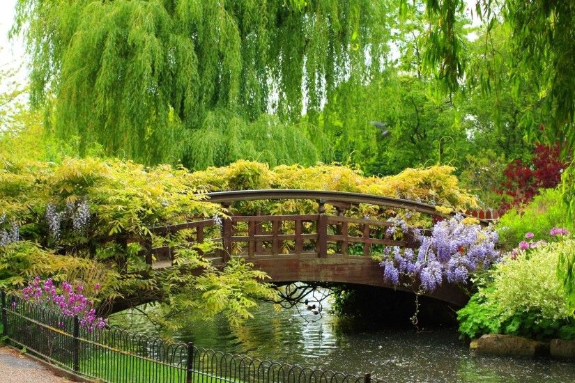 spring garden bridge park nice bridge river fence plants flower tree weeping  willow beauty