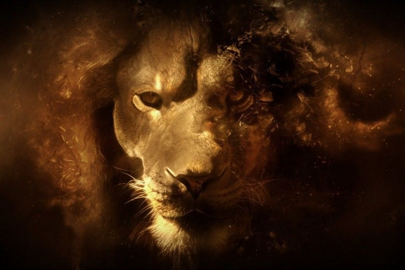 fantasy hd lion high defini