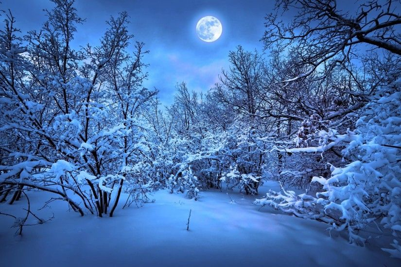 ... Snow HD Wallpapers 3 ...