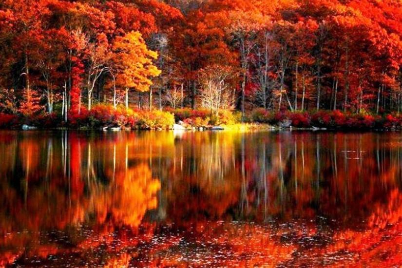 fall foliage river autumn red lake reflections shore beautiful .
