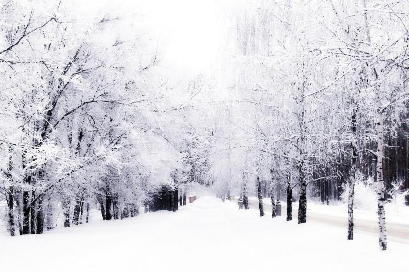 most popular winter backgrounds 1920x1080