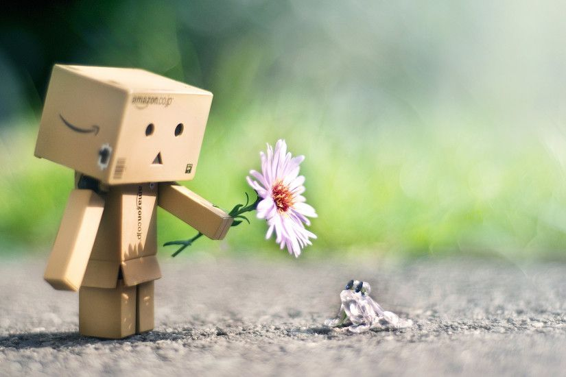 danbo, box, amazon, daisy, flower, fog