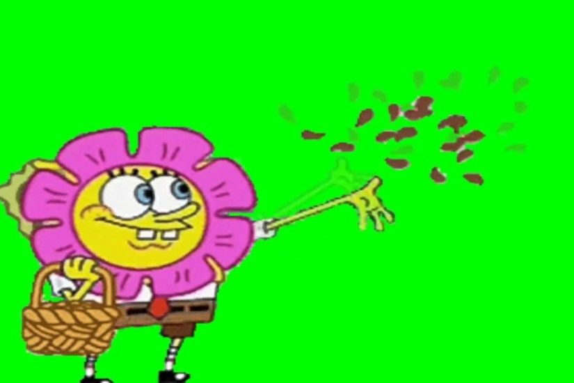 1920x1080 Green Screen: Flowers (Spongebob)