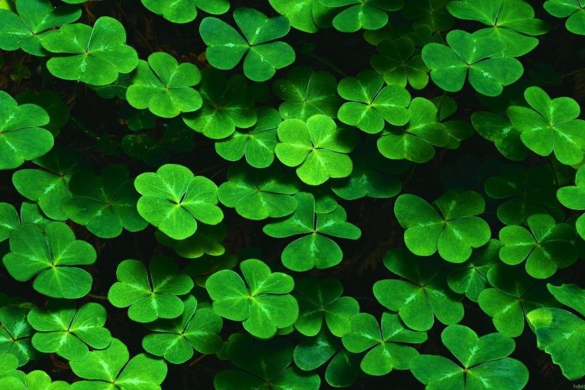 St Patricks Day Desktop Wallpaper 183 ① Wallpapertag