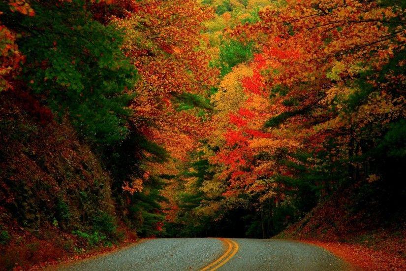 Full HD 1080p Autumn Wallpapers Desktop Backgrounds 1920x1080