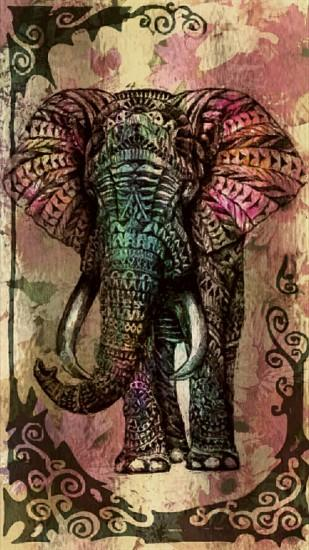 elephant wallpaper 1080x1920 for htc