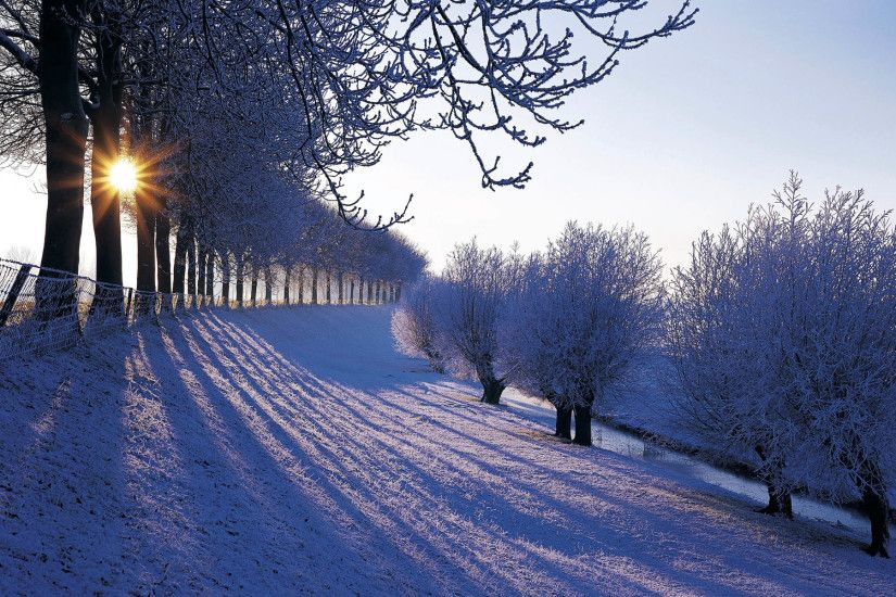 Beautiful winter scenery Winter Wallpaper Winter snowfall beautiful  Wallpaper Beauty of nature in Winter Sunlight in .
