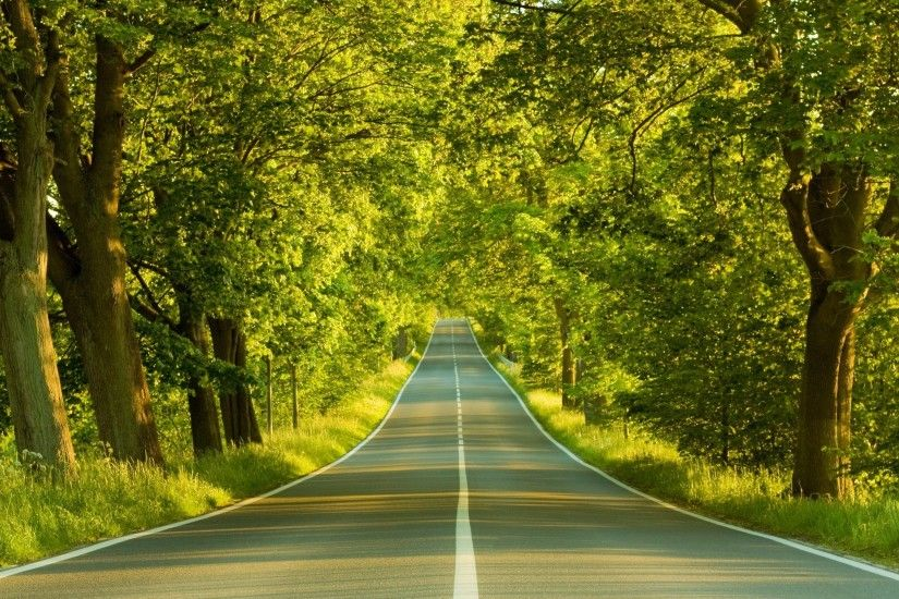 Forest Road Beautiful Landscape Wallpaper for desktop and mobile in high  resolution download. We have