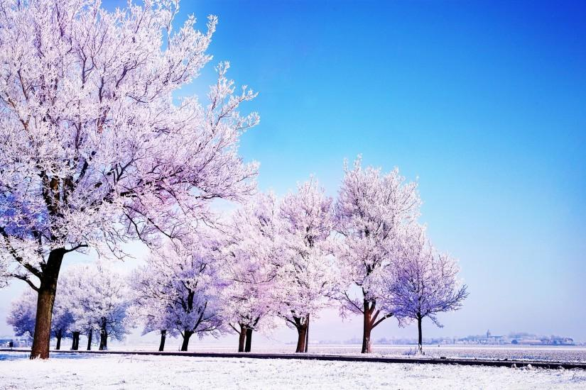Winter Background HD Wide Wallpaper For Widescreen #3688