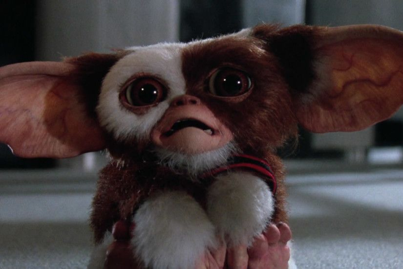 Gremlins 2: The New Batch HD Wallpaper | Hintergrund | 1920x1080 |  ID:671906 - Wallpaper Abyss