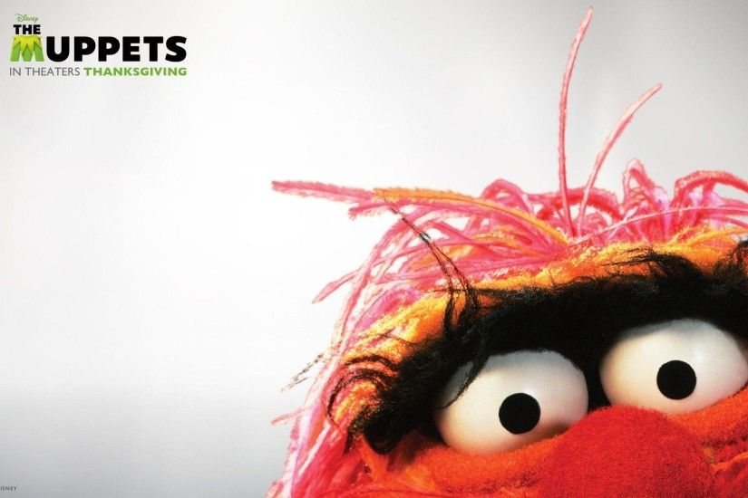 Muppets Wallpapers - Wallpaper Cave