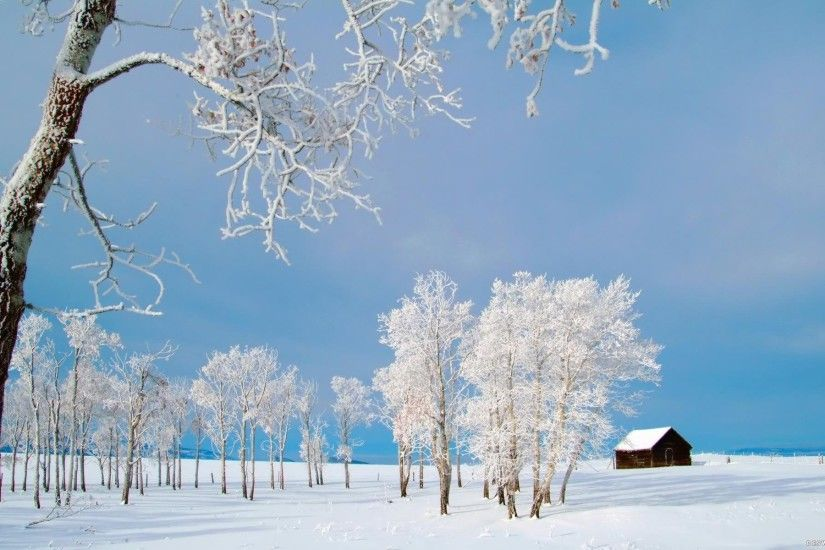 desktop wallpaper winter 183��