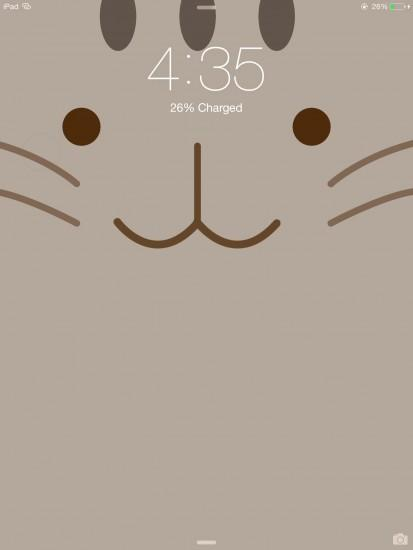vertical pusheen wallpaper 1536x2048