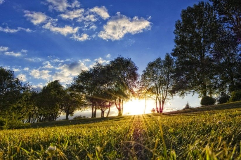 summer nature backgrounds. beautiful nature summer backgrounds a
