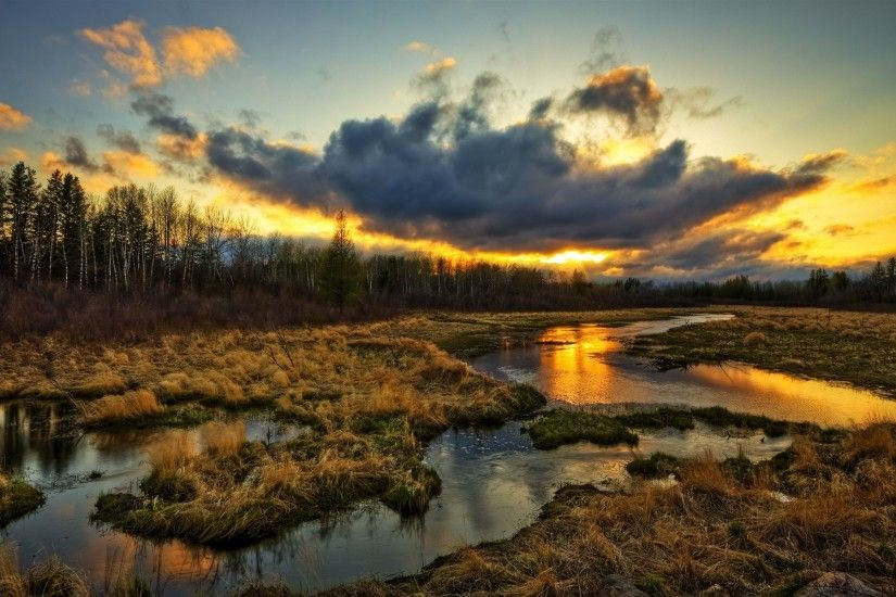 Wetlands, trees, clouds, sunset, grass, water stream, beautiful scenery  wallpaper