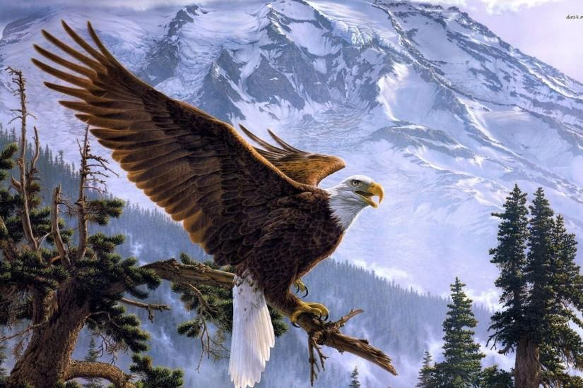 Bald eagle wallpaper - 975850