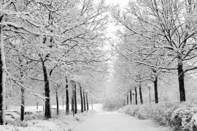 free winter background 2560x1600