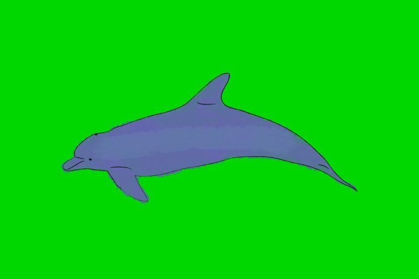 Real Cartoon Dolphin Swimming on a Green Screen Background