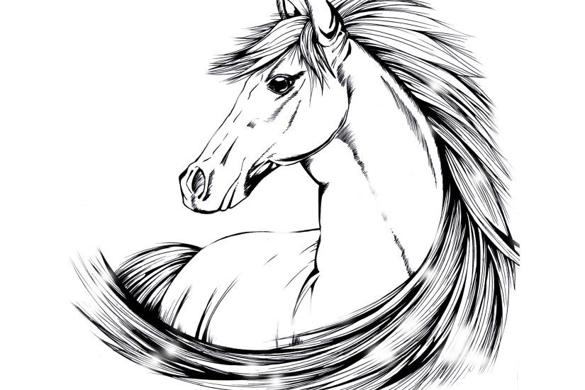 indian horse tattoo designs | Beautiful horse drawing wallpaper