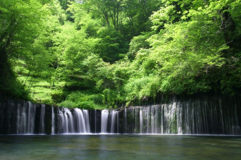 Forest Waterfall Wallpaper 8102