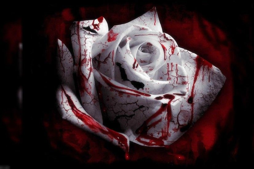 bloody-white-rose-scary-images-hd-wallpaper